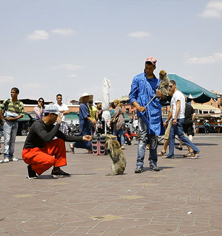 Moroccan-theater_01